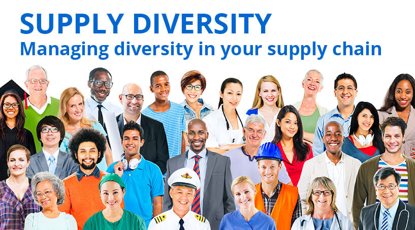 Supply diversity article image